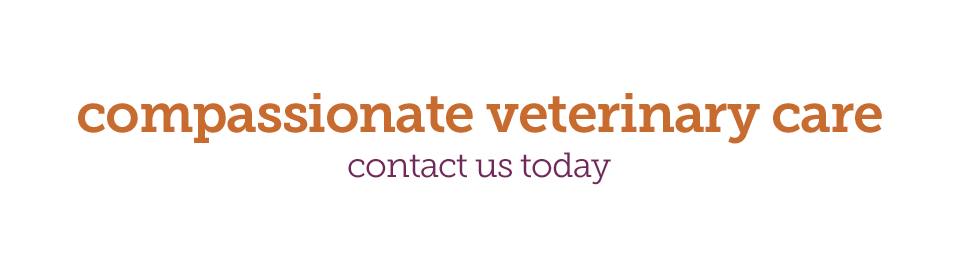 compassionate veterinary care logo - Avro Pet Hospital
